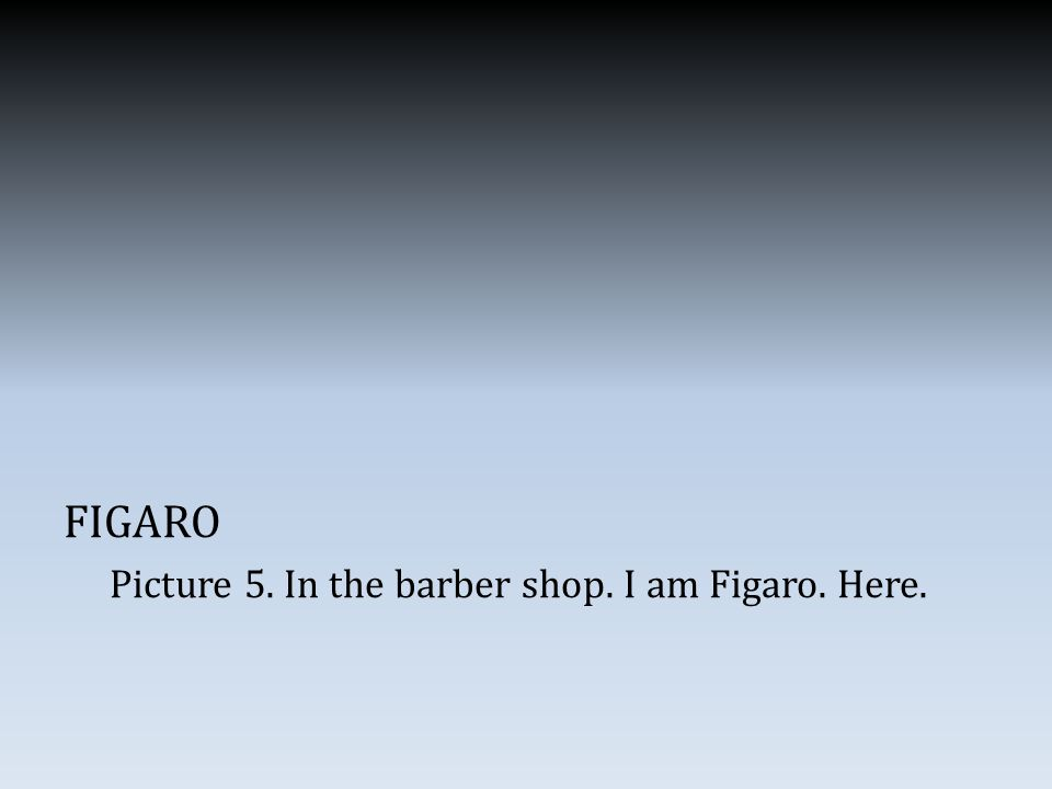 FIGARO Picture 5. In the barber shop. I am Figaro. Here.