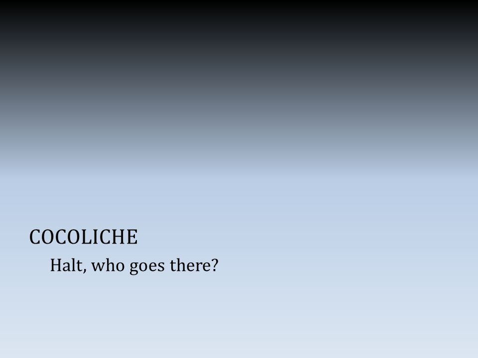 COCOLICHE Halt, who goes there