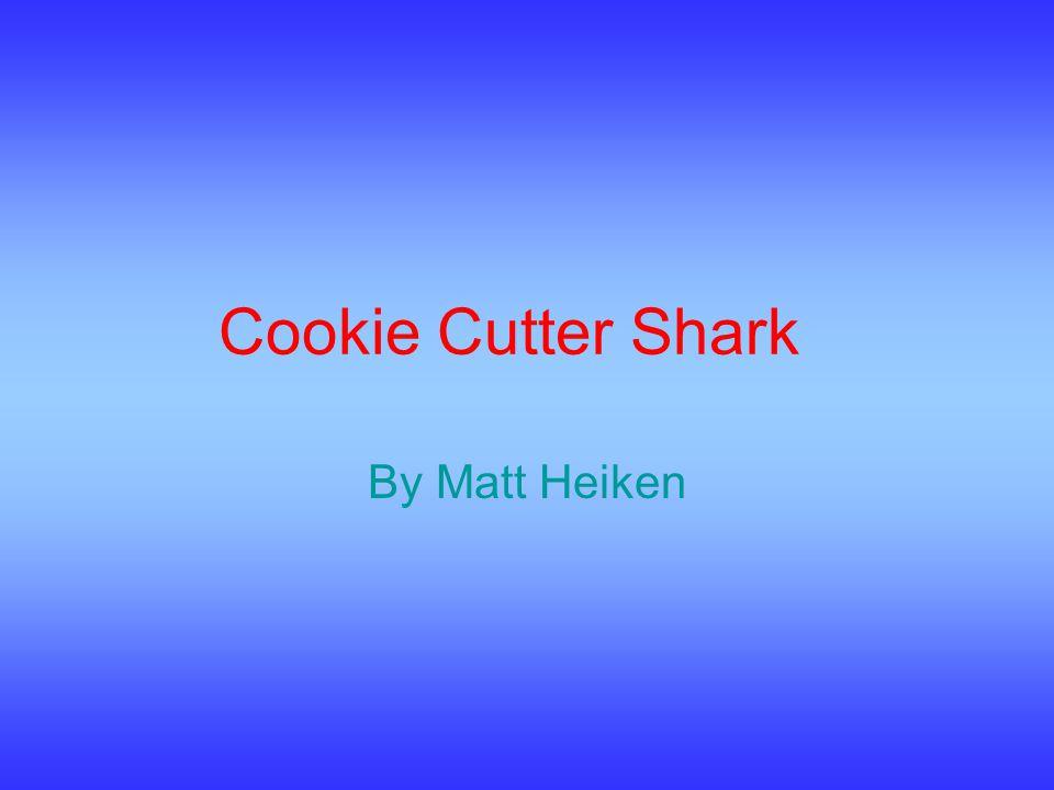Cookie Cutter Shark By Matt Heiken