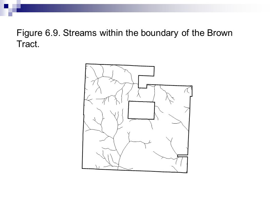 Figure 6.9. Streams within the boundary of the Brown Tract.