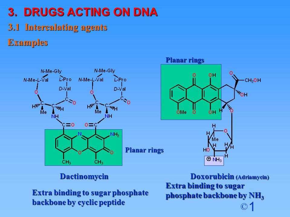 1 © Planar rings Extra binding to sugar phosphate backbone by NH 3 Doxorubicin (Adriamycin) Dactinomycin Extra binding to sugar phosphate backbone by