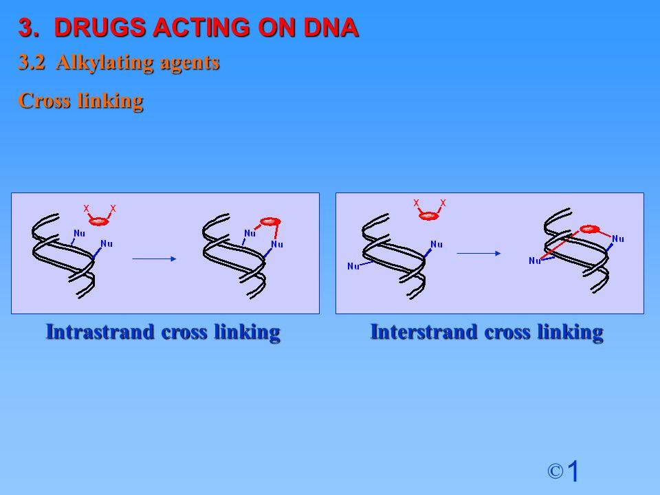 1 © Interstrand cross linking Intrastrand cross linking Cross linking 3.2 Alkylating agents 3. DRUGS ACTING ON DNA