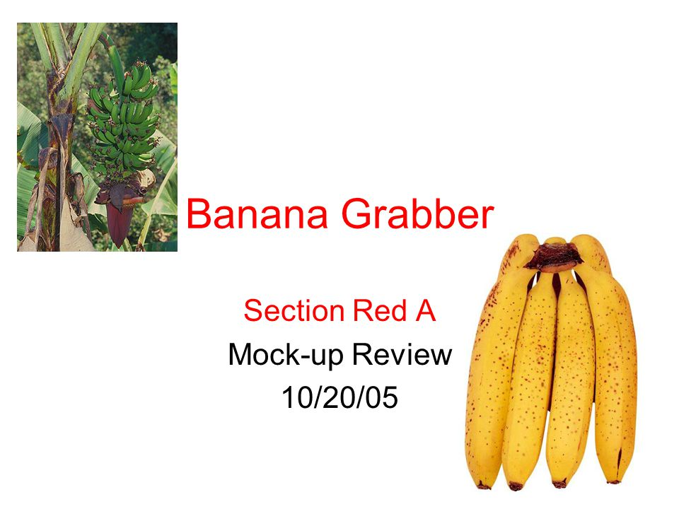 Section Red A Mock-up Review 10/20/05 Banana Grabber