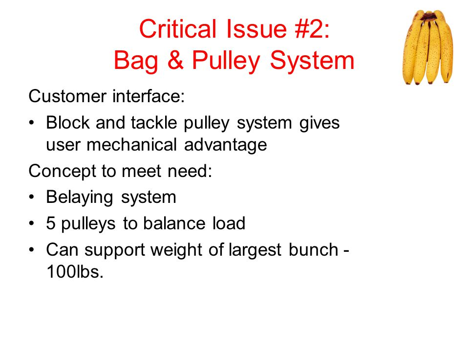 Critical Issue #2: Bag & Pulley System Customer interface: Block and tackle pulley system gives user mechanical advantage Concept to meet need: Belayi