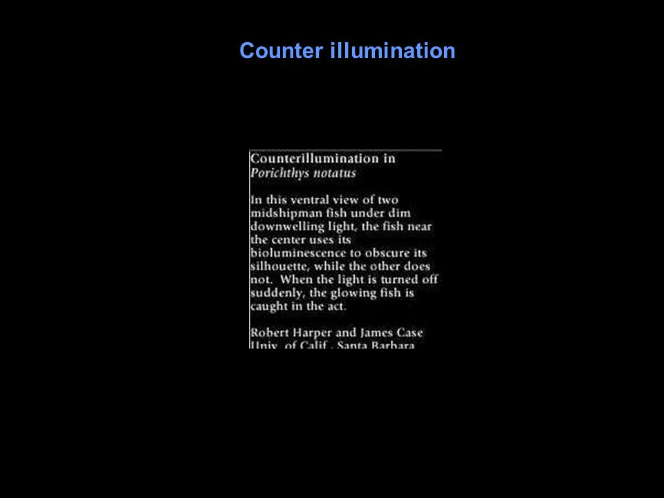 Counter illumination