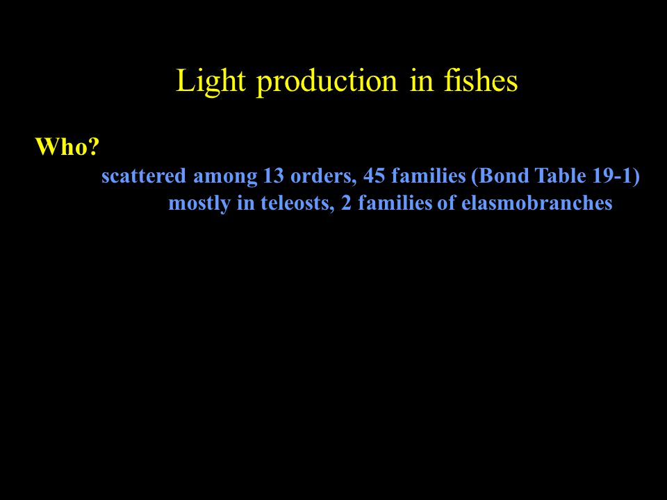 Light production in fishes Who.