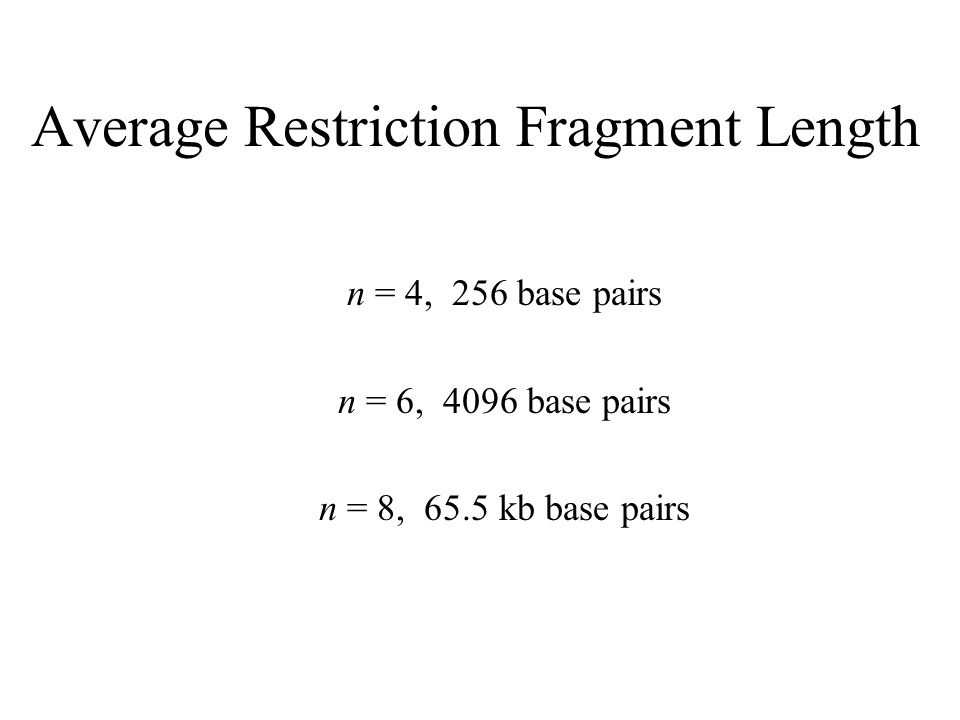 Average Restriction Fragment Length n = 4, 256 base pairs n = 6, 4096 base pairs n = 8, 65.5 kb base pairs