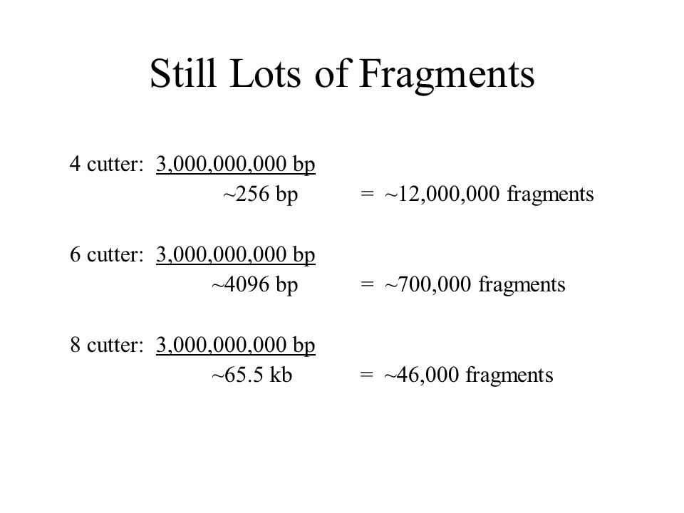 Still Lots of Fragments 4 cutter: 3,000,000,000 bp ~256 bp = ~12,000,000 fragments 6 cutter: 3,000,000,000 bp ~4096 bp = ~700,000 fragments 8 cutter: 3,000,000,000 bp ~65.5 kb = ~46,000 fragments