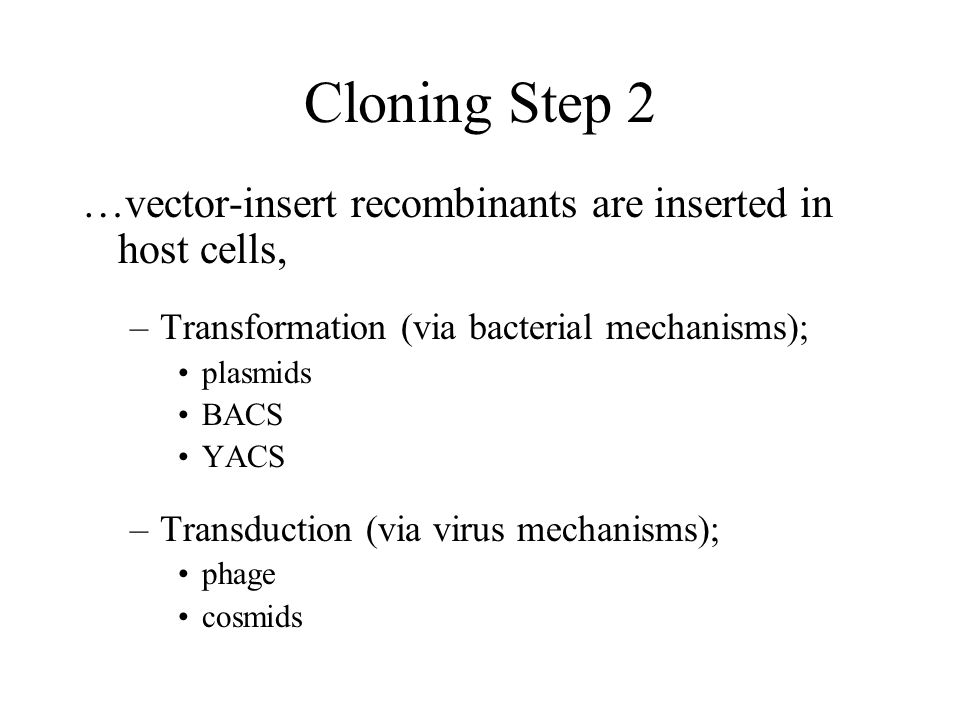 Cloning Step 2 …vector-insert recombinants are inserted in host cells, –Transformation (via bacterial mechanisms); plasmids BACS YACS –Transduction (via virus mechanisms); phage cosmids