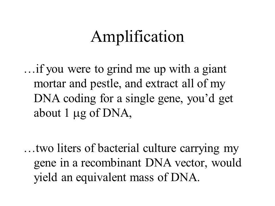 Amplification …if you were to grind me up with a giant mortar and pestle, and extract all of my DNA coding for a single gene, you'd get about 1  g of DNA, …two liters of bacterial culture carrying my gene in a recombinant DNA vector, would yield an equivalent mass of DNA.