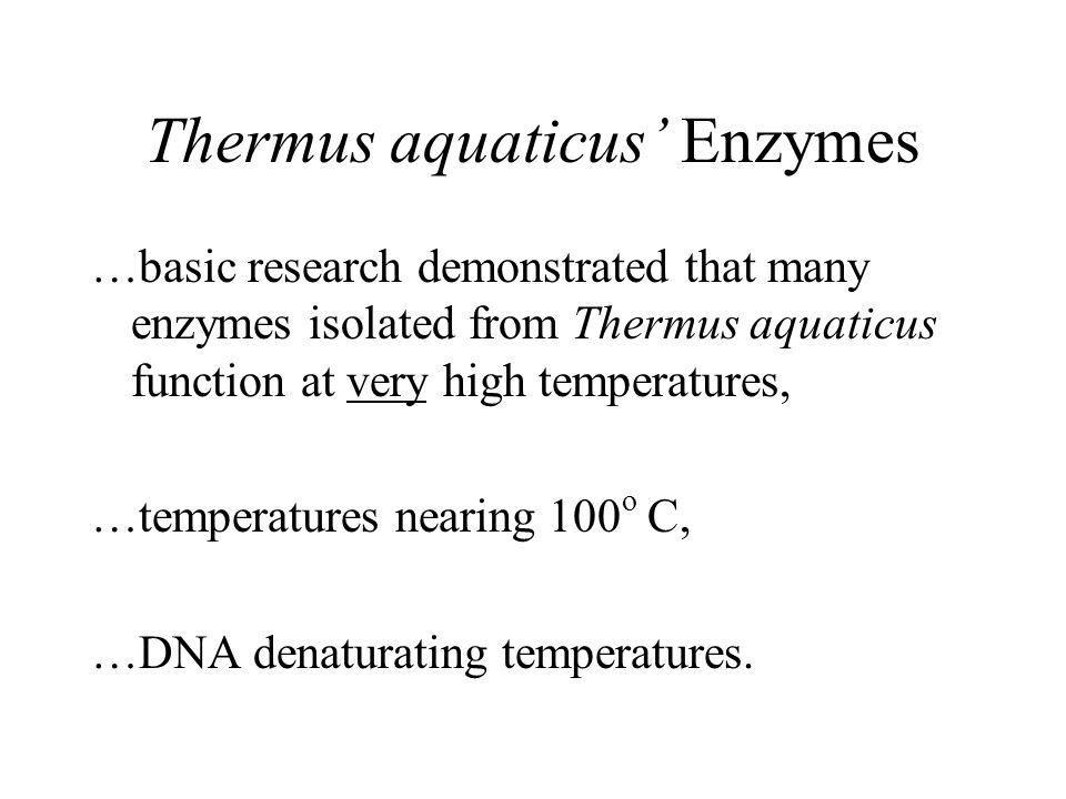 Thermus aquaticus' Enzymes …basic research demonstrated that many enzymes isolated from Thermus aquaticus function at very high temperatures, …temperatures nearing 100 o C, …DNA denaturating temperatures.