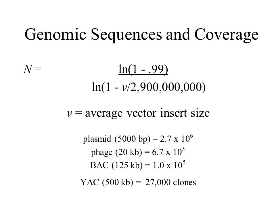 Genomic Sequences and Coverage N = ln(1 -.99) ln(1 - v/2,900,000,000) v = average vector insert size plasmid (5000 bp) = 2.7 x 10 6 phage (20 kb) = 6.7 x 10 5 BAC (125 kb) = 1.0 x 10 5 YAC (500 kb) = 27,000 clones