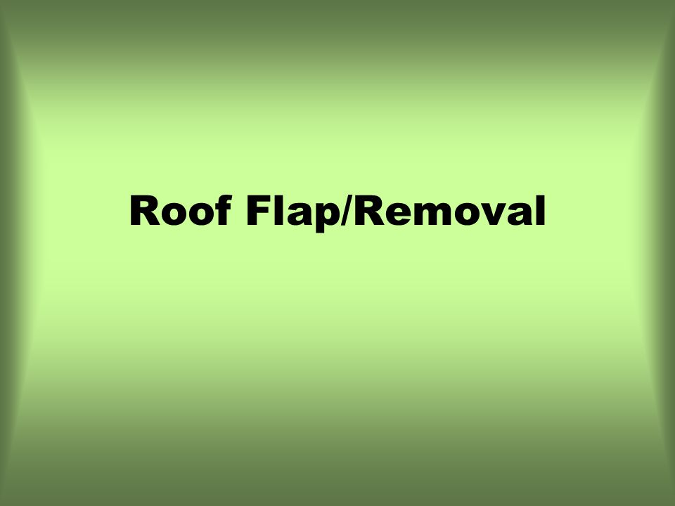 Roof Flap/Removal