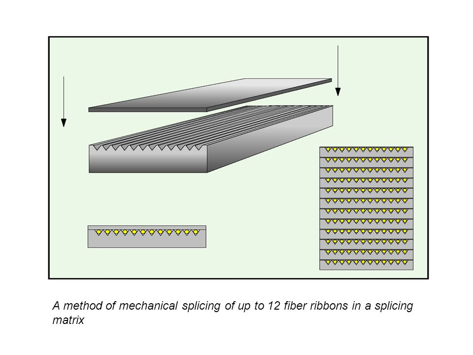 A method of mechanical splicing of up to 12 fiber ribbons in a splicing matrix