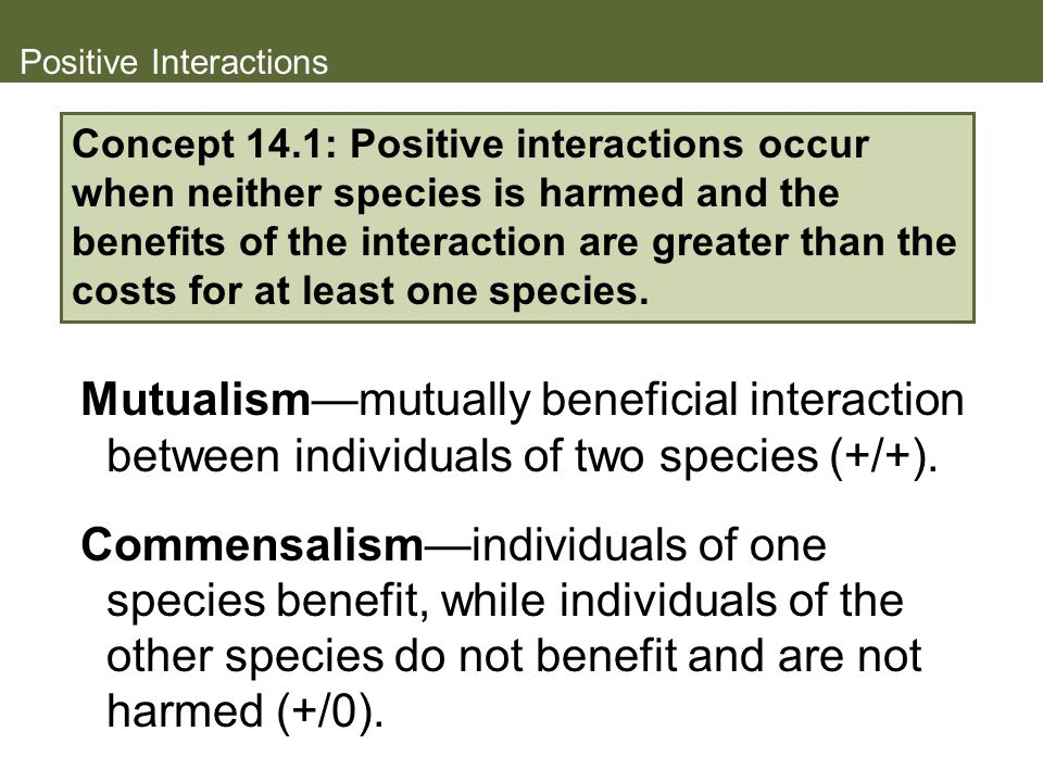 Positive Interactions Mutualism—mutually beneficial interaction between individuals of two species (+/+).