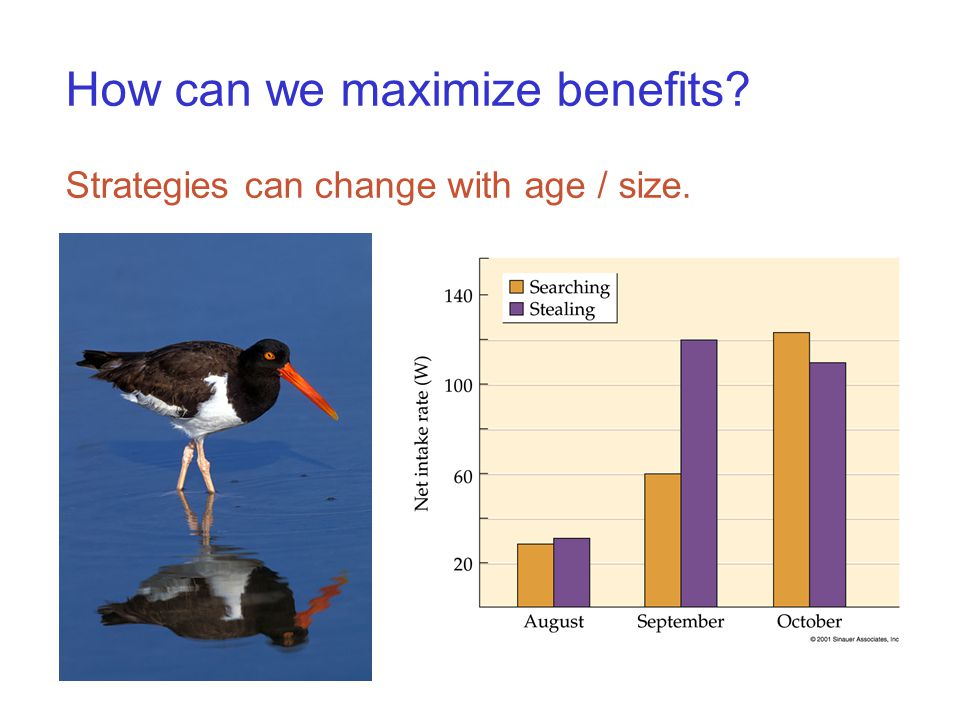 How can we maximize benefits Strategies can change with age / size.