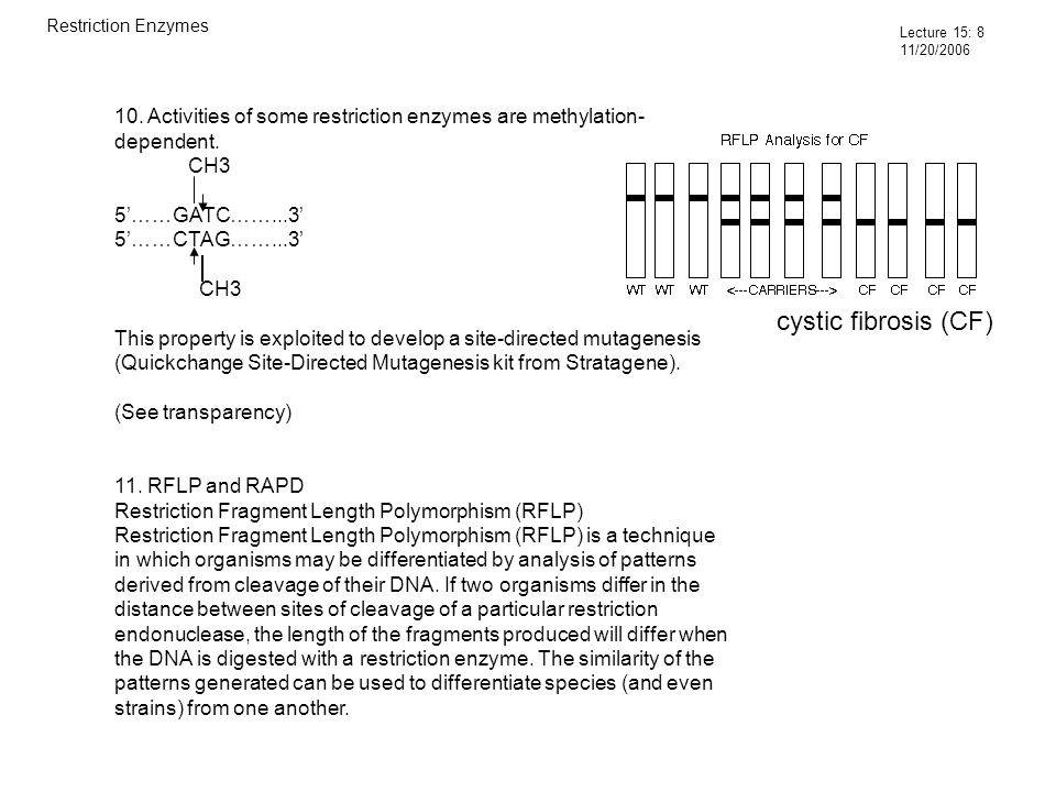 10. Activities of some restriction enzymes are methylation- dependent.
