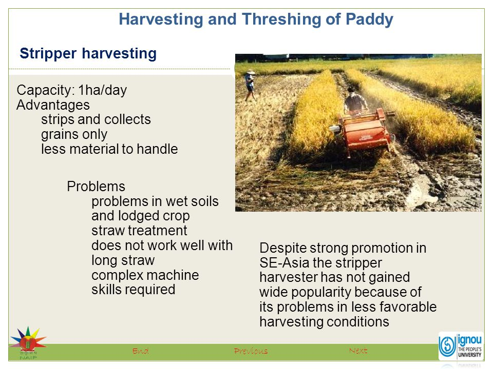 Harvesting and Threshing of Paddy Next PreviousEnd Capacity: 1ha/day Advantages strips and collects grains only less material to handle Stripper harve