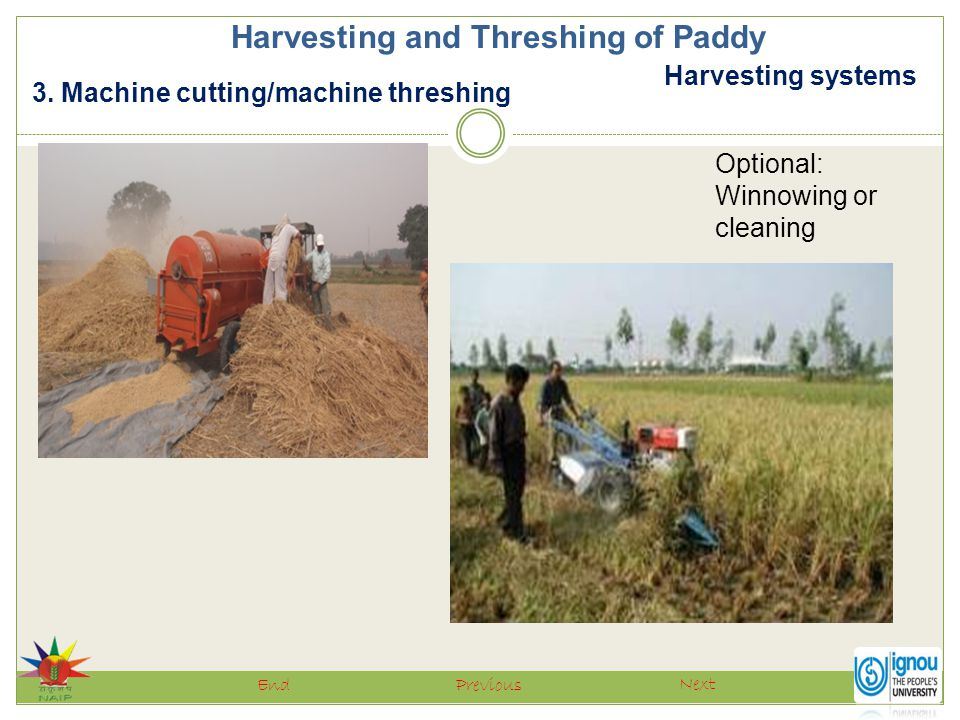 Harvesting systems Harvesting and Threshing of Paddy 3. Machine cutting/machine threshing Next PreviousEnd Optional: Winnowing or cleaning
