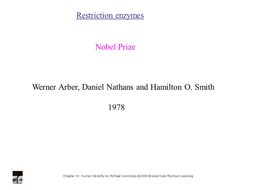 Chapter 13 Human Heredity by Michael Cummings ©2006 Brooks/Cole-Thomson Learning Restriction enzymes Nobel Prize Werner Arber, Daniel Nathans and Hamilton O.