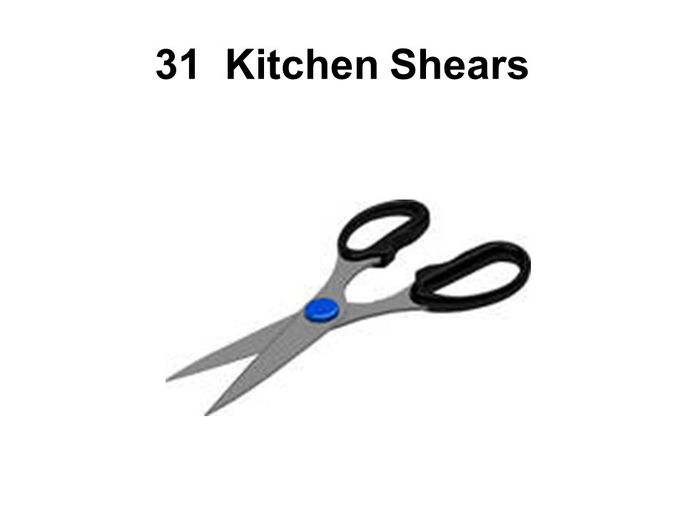 31 Kitchen Shears