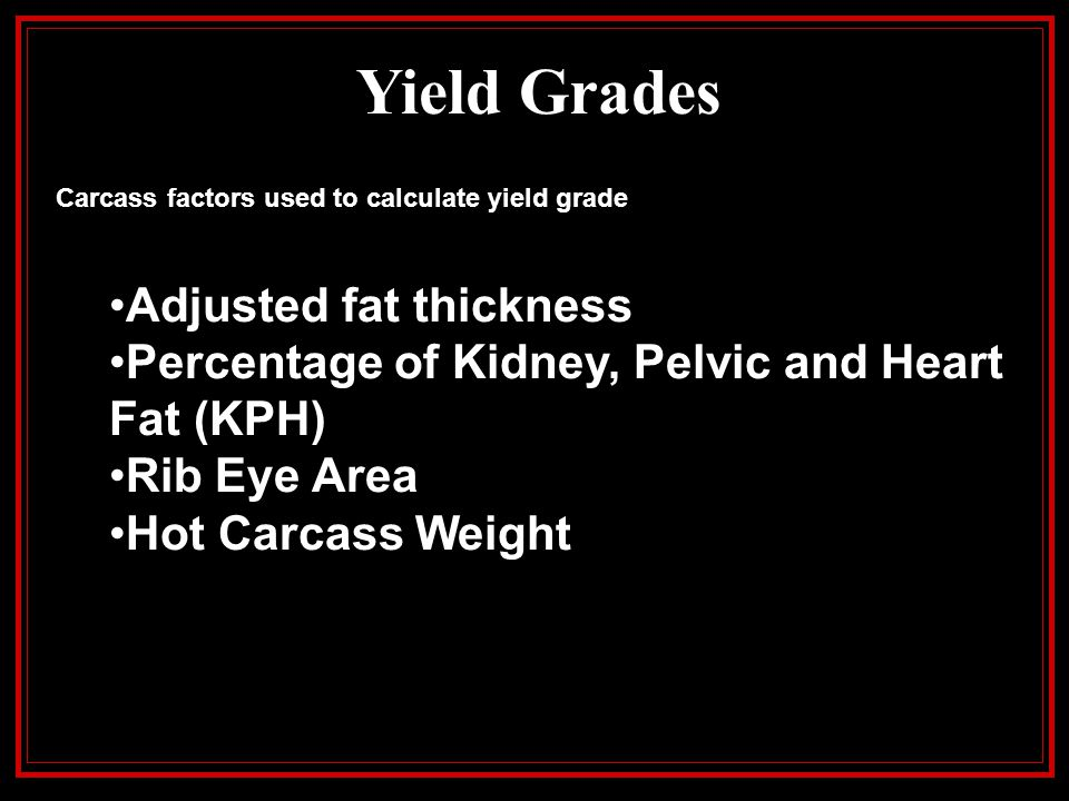 Yield Grades Carcass factors used to calculate yield grade Adjusted fat thickness Percentage of Kidney, Pelvic and Heart Fat (KPH) Rib Eye Area Hot Ca