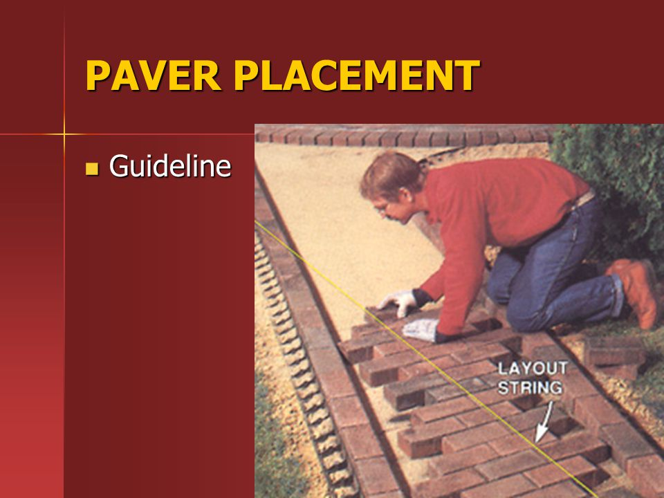 PAVER PLACEMENT Guideline Guideline