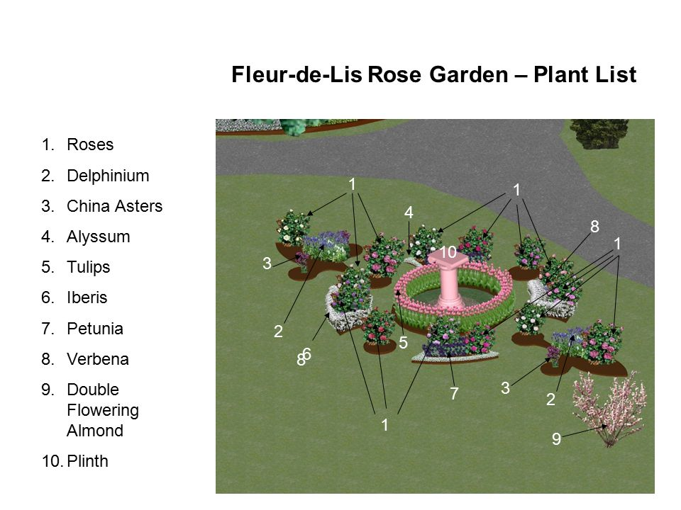 Fleur-de-Lis Rose Garden – Plant List 1 2 3 4 5 6 2 8 3 9 1 1 1.Roses 2.Delphinium 3.China Asters 4.Alyssum 5.Tulips 6.Iberis 7.Petunia 8.Verbena 9.Double Flowering Almond 10.Plinth 1 10 7 8