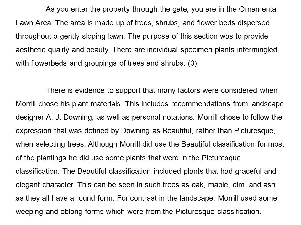 Morrill's fascination for plants led him to experiment with a variety of cultivars and species.