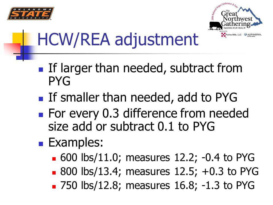 HCW/REA adjustment If larger than needed, subtract from PYG If smaller than needed, add to PYG For every 0.3 difference from needed size add or subtract 0.1 to PYG Examples: 600 lbs/11.0; measures 12.2; -0.4 to PYG 800 lbs/13.4; measures 12.5; +0.3 to PYG 750 lbs/12.8; measures 16.8; -1.3 to PYG