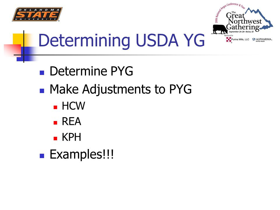 Determining USDA YG Determine PYG Make Adjustments to PYG HCW REA KPH Examples!!!