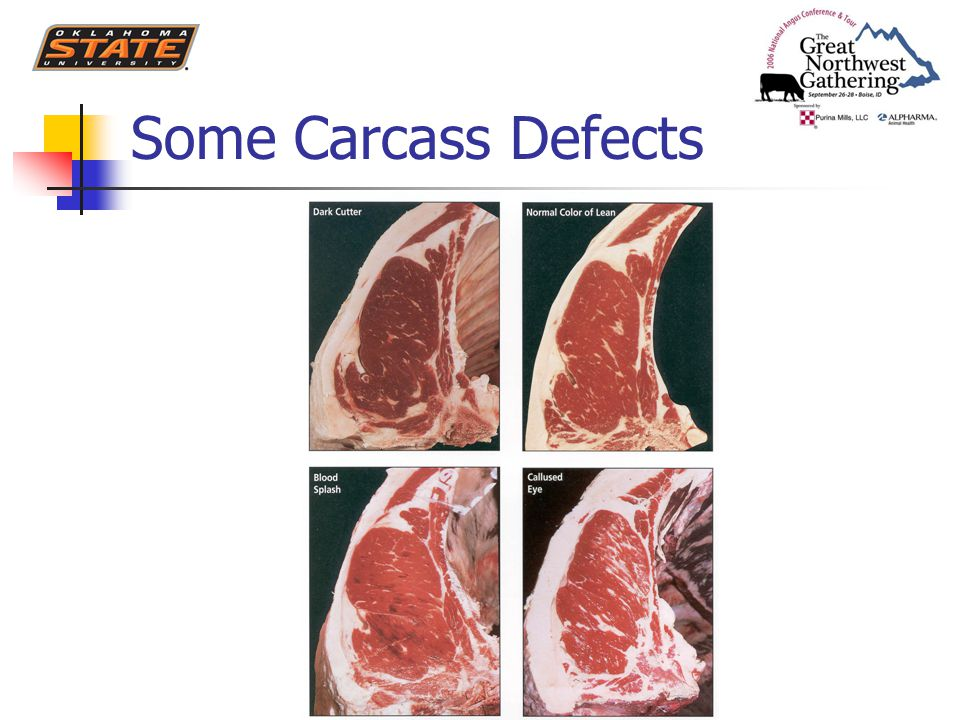 Some Carcass Defects