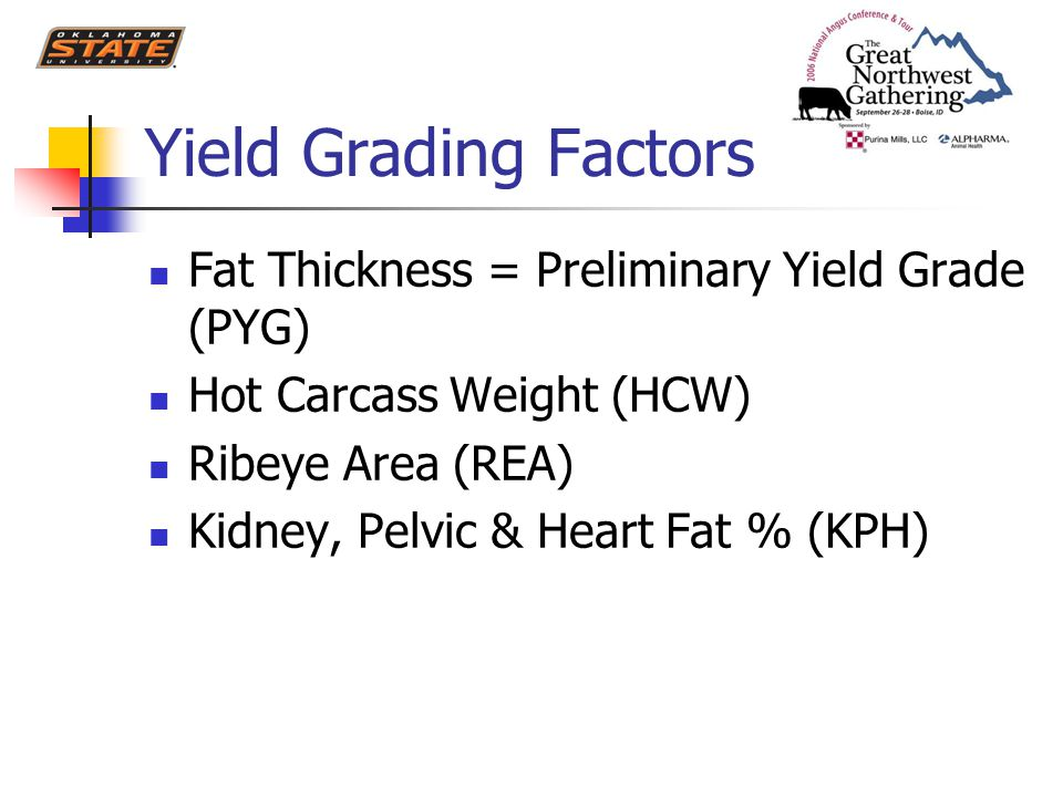 Yield Grading Factors Fat Thickness = Preliminary Yield Grade (PYG) Hot Carcass Weight (HCW) Ribeye Area (REA) Kidney, Pelvic & Heart Fat % (KPH)
