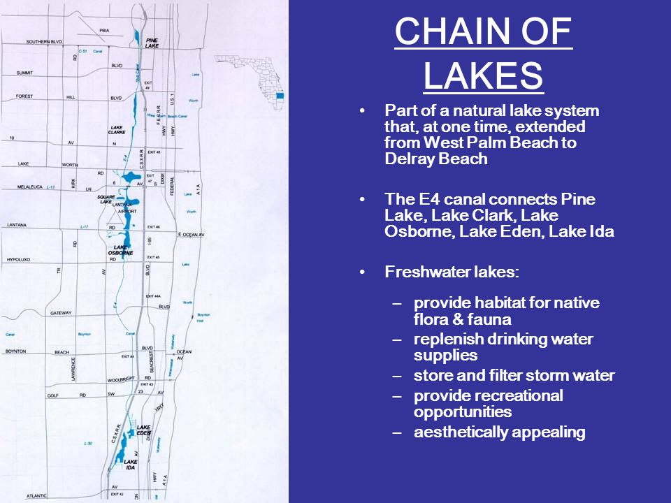 CHAIN OF LAKES Part of a natural lake system that, at one time, extended from West Palm Beach to Delray Beach The E4 canal connects Pine Lake, Lake Clark, Lake Osborne, Lake Eden, Lake Ida Freshwater lakes: –provide habitat for native flora & fauna –replenish drinking water supplies –store and filter storm water –provide recreational opportunities –aesthetically appealing