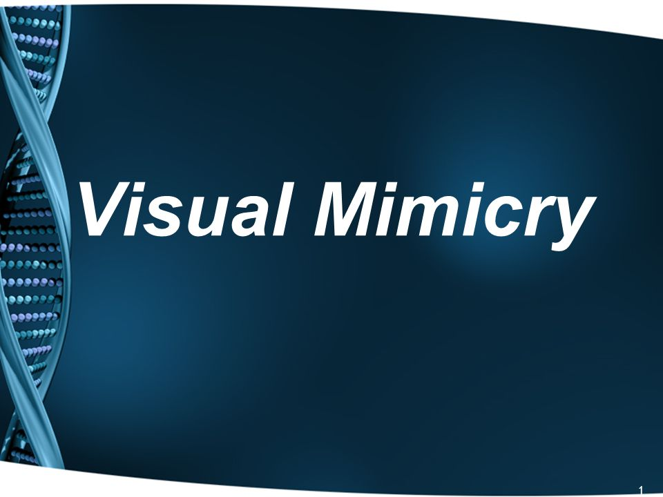 32 Summary Why do animals use mimicry.What are the four general categories of mimicry.