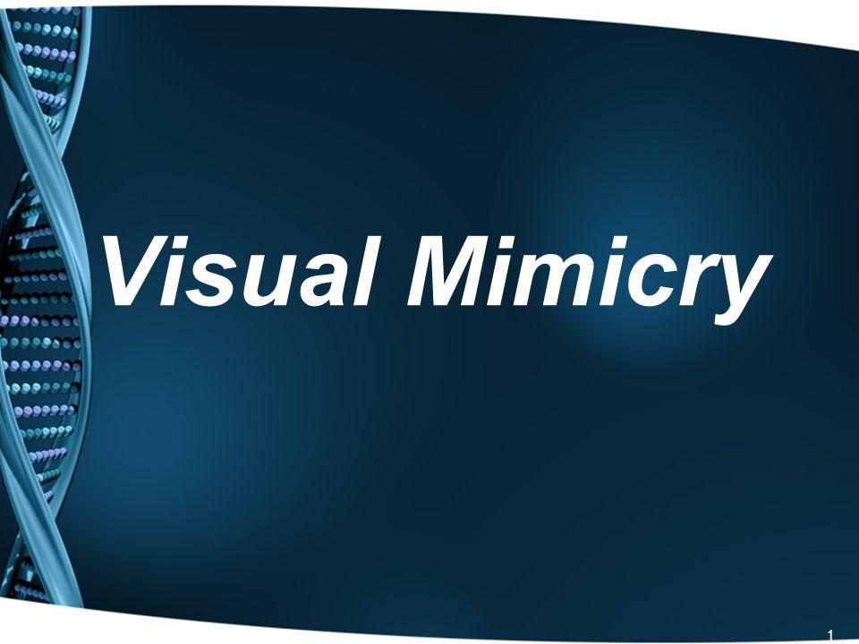 22 Audio Mimicry.