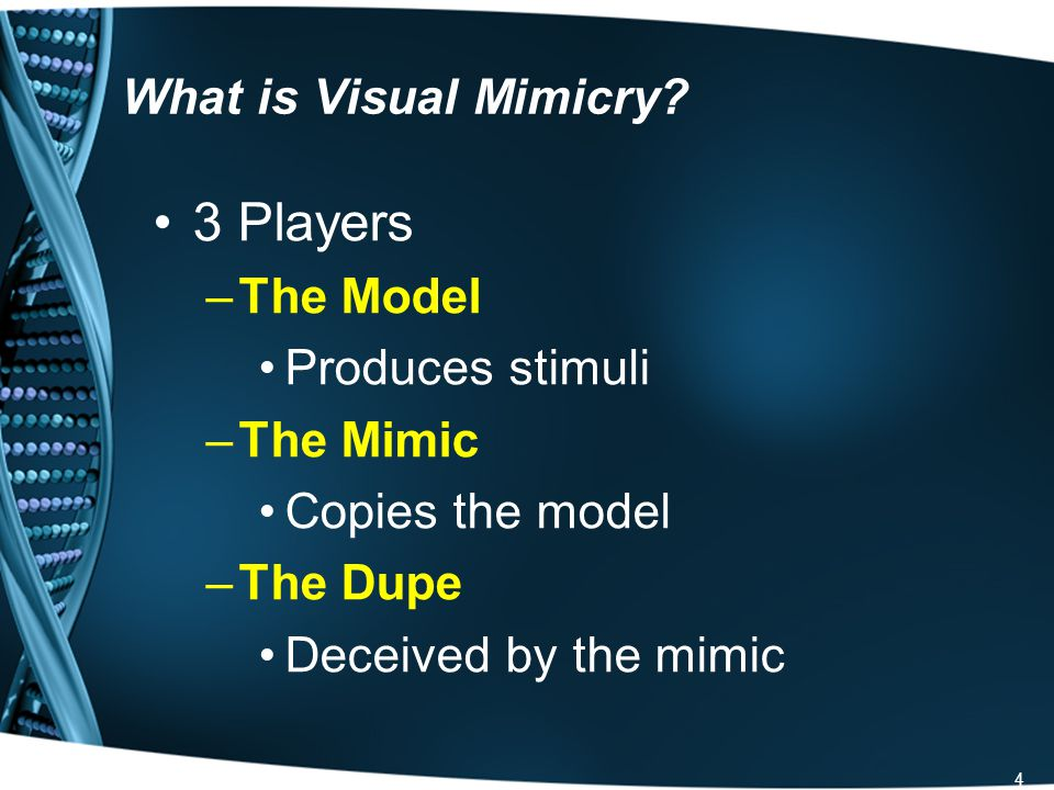 5 How do we categorize visual mimicry.