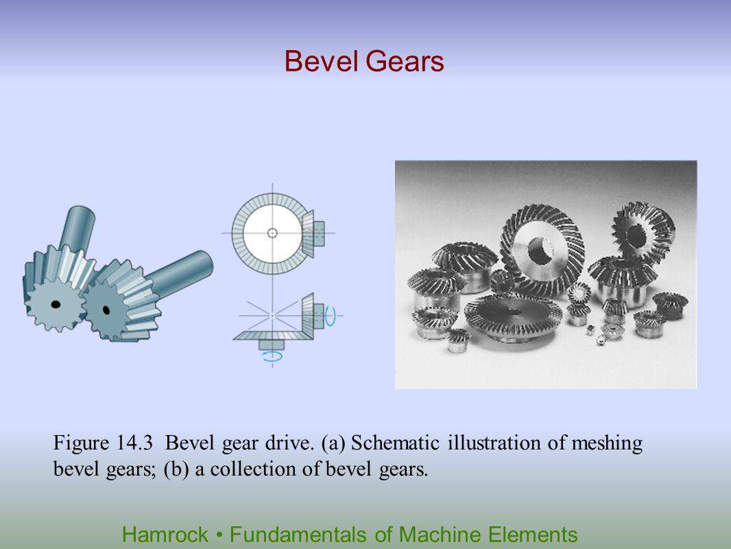 Hamrock Fundamentals of Machine Elements Worm Gears Figure 14.4 Worm gear drive.