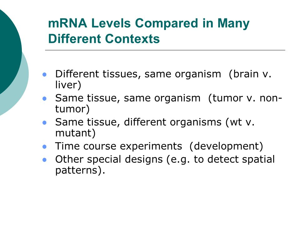 mRNA Levels Compared in Many Different Contexts Different tissues, same organism (brain v. liver) Same tissue, same organism (tumor v. non- tumor) Sam