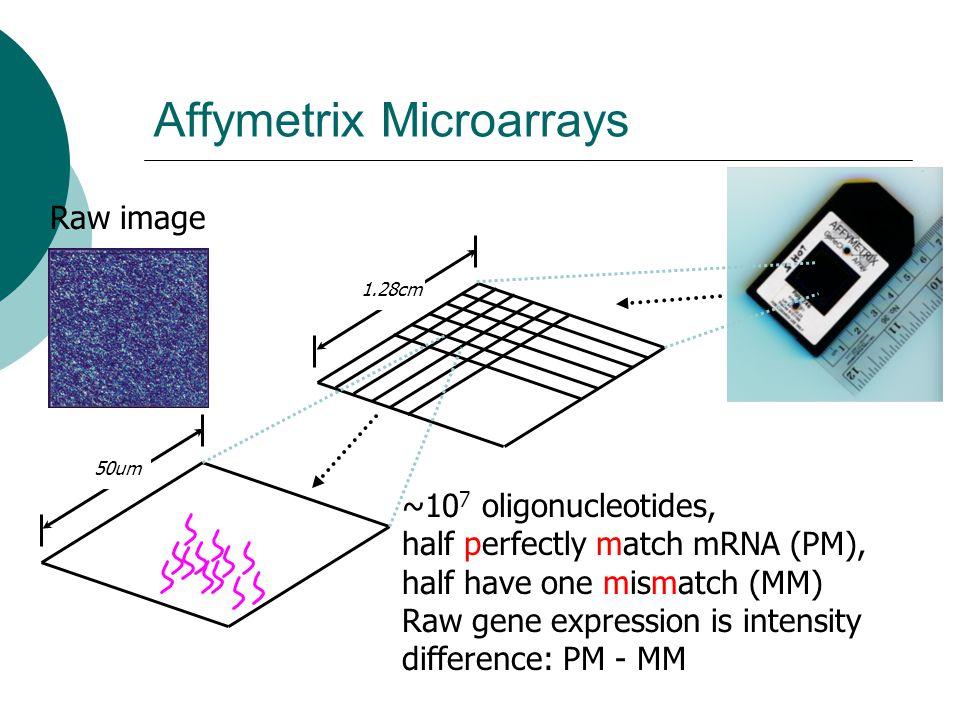 Affymetrix Microarrays 50um 1.28cm ~10 7 oligonucleotides, half perfectly match mRNA (PM), half have one mismatch (MM) Raw gene expression is intensit