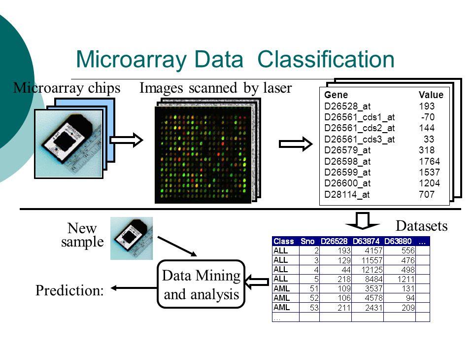 Microarray Data Classification Prediction: Gene Value D26528_at 193 D26561_cds1_at -70 D26561_cds2_at 144 D26561_cds3_at 33 D26579_at 318 D26598_at 17
