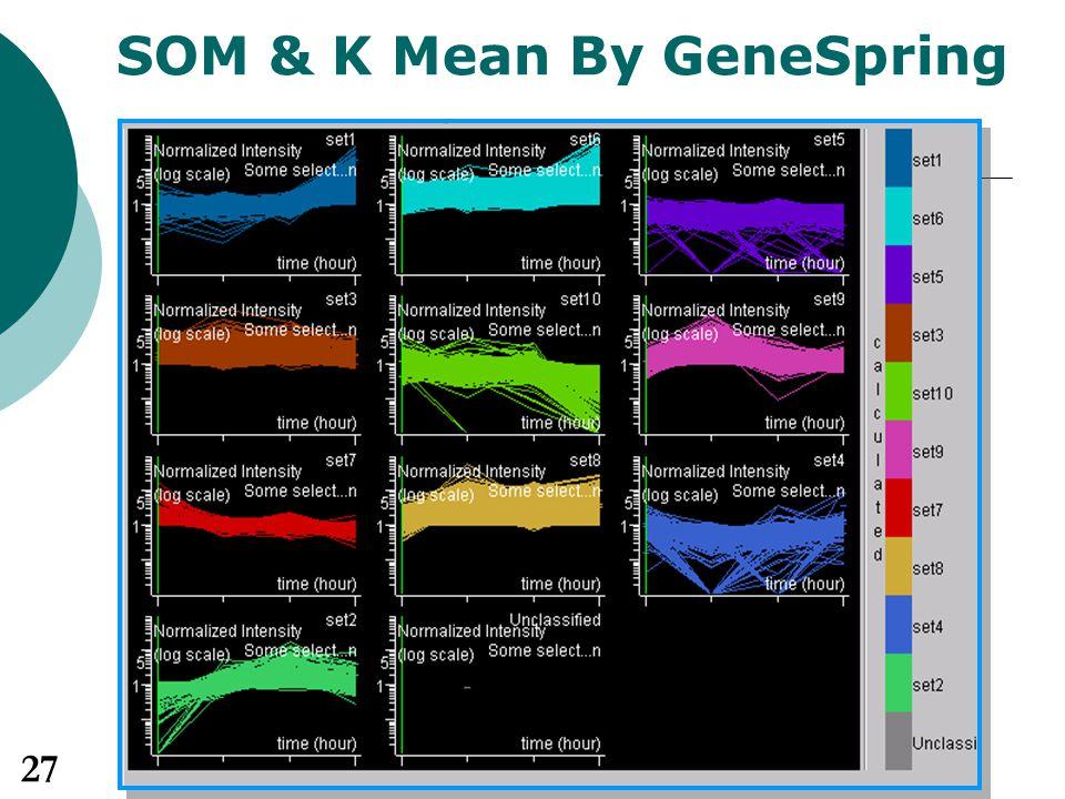 SOM & K Mean By GeneSpring 27