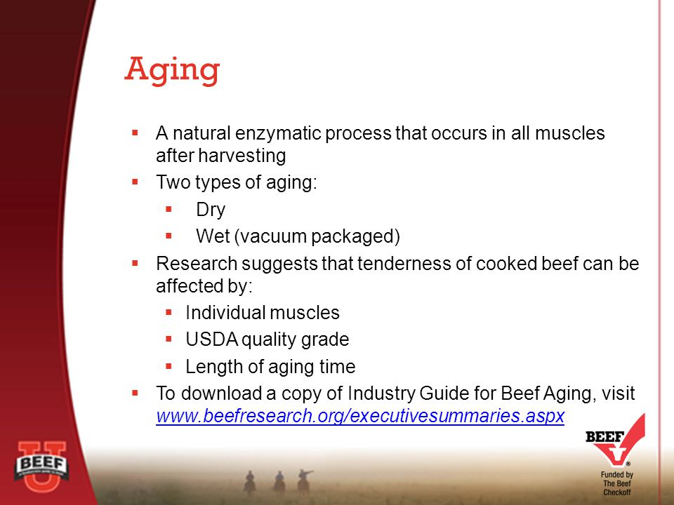  A natural enzymatic process that occurs in all muscles after harvesting  Two types of aging:  Dry  Wet (vacuum packaged)  Research suggests that tenderness of cooked beef can be affected by:  Individual muscles  USDA quality grade  Length of aging time  To download a copy of Industry Guide for Beef Aging, visit www.beefresearch.org/executivesummaries.aspx www.beefresearch.org/executivesummaries.aspx Aging