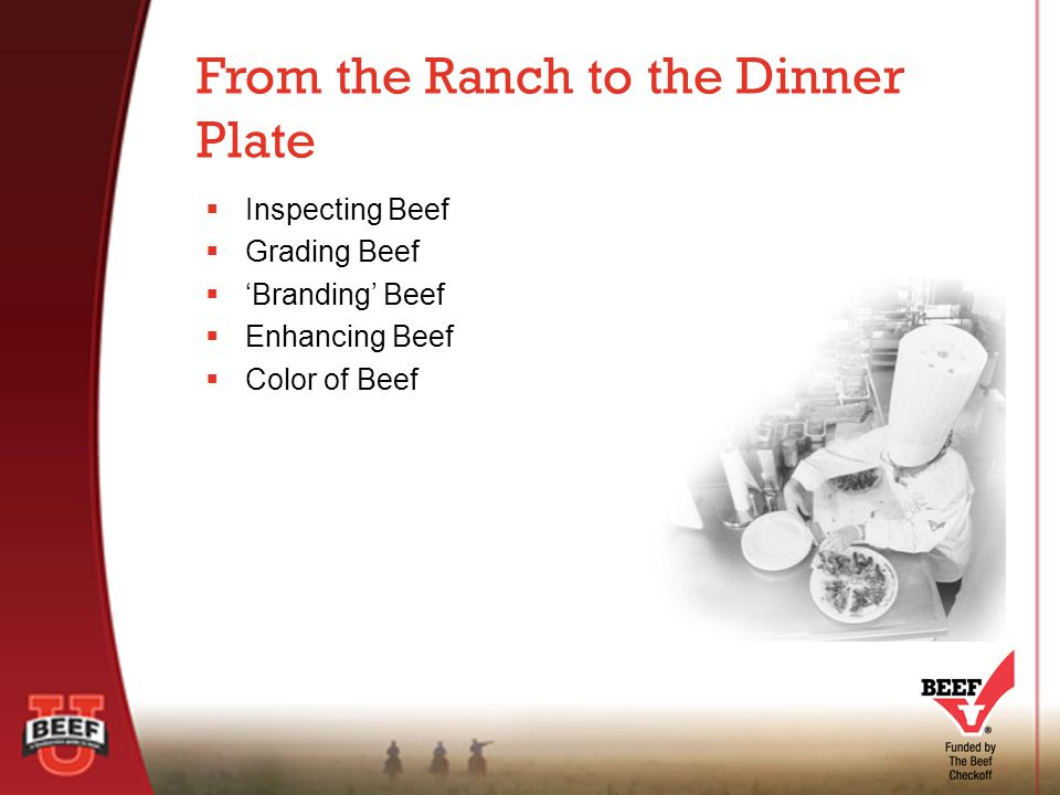  Began in 1891  Responsibility of the Food Safety and Inspection Service (FSIS), the public health agency the USDA  Considered by many to be the most regulated segment of the food industry Beef Inspection