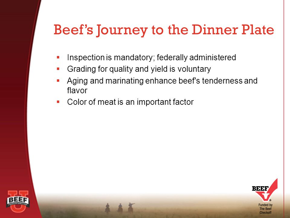  Inspection is mandatory; federally administered  Grading for quality and yield is voluntary  Aging and marinating enhance beef s tenderness and flavor  Color of meat is an important factor Beef's Journey to the Dinner Plate
