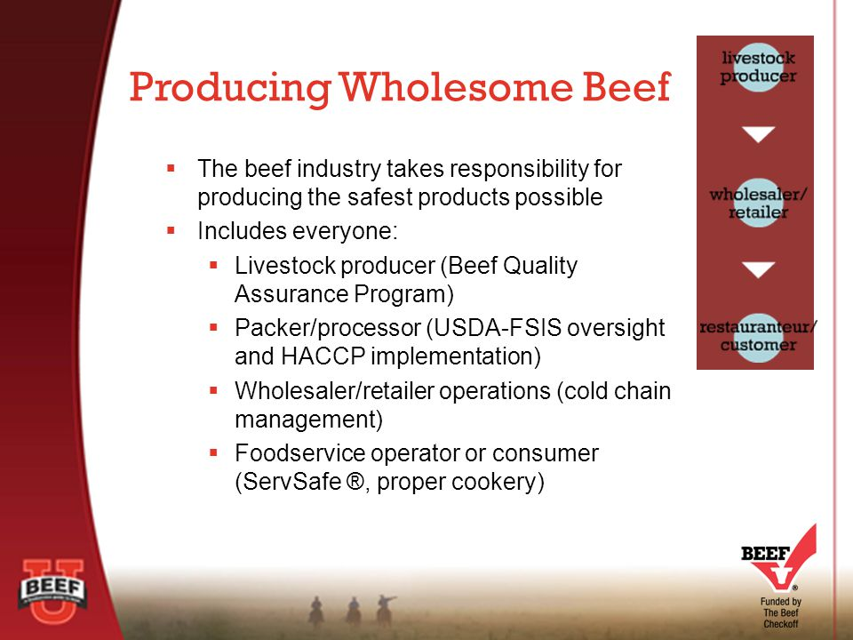  The beef industry takes responsibility for producing the safest products possible  Includes everyone:  Livestock producer (Beef Quality Assurance Program)  Packer/processor (USDA-FSIS oversight and HACCP implementation)  Wholesaler/retailer operations (cold chain management)  Foodservice operator or consumer (ServSafe ®, proper cookery) Producing Wholesome Beef
