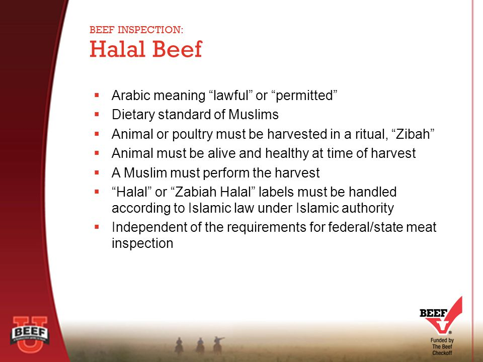  Arabic meaning lawful or permitted  Dietary standard of Muslims  Animal or poultry must be harvested in a ritual, Zibah  Animal must be alive and healthy at time of harvest  A Muslim must perform the harvest  Halal or Zabiah Halal labels must be handled according to Islamic law under Islamic authority  Independent of the requirements for federal/state meat inspection Halal Beef BEEF INSPECTION: