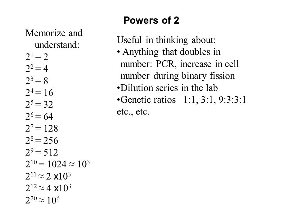 Powers of 2 Memorize and understand: 2 1 = 2 2 2 = 4 2 3 = 8 2 4 = 16 2 5 = 32 2 6 = 64 2 7 = 128 2 8 = 256 2 9 = 512 2 10 = 1024 ≈ 10 3 2 11 ≈ 2 x 10 3 2 12 ≈ 4 x 10 3 2 20 ≈ 10 6 Useful in thinking about: Anything that doubles in number: PCR, increase in cell number during binary fission Dilution series in the lab Genetic ratios 1:1, 3:1, 9:3:3:1 etc., etc.