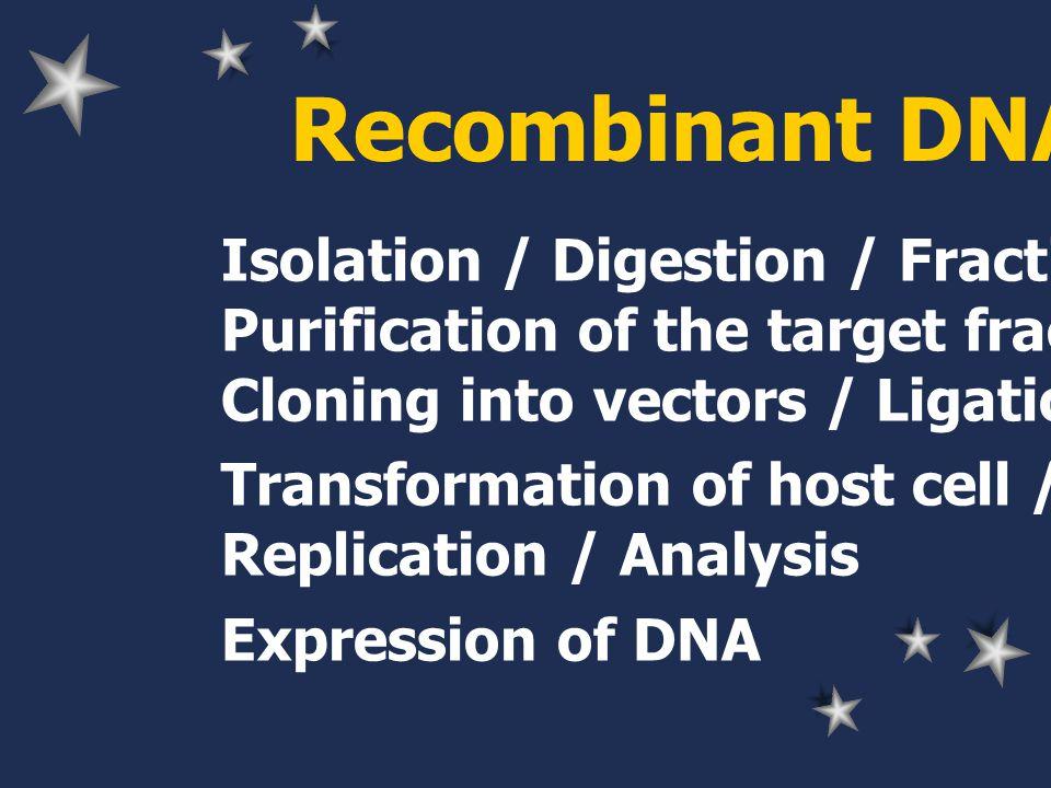 Taq polymerase DNA polymerase: Taq polymerase thermostable 75-80 C PCR reaction
