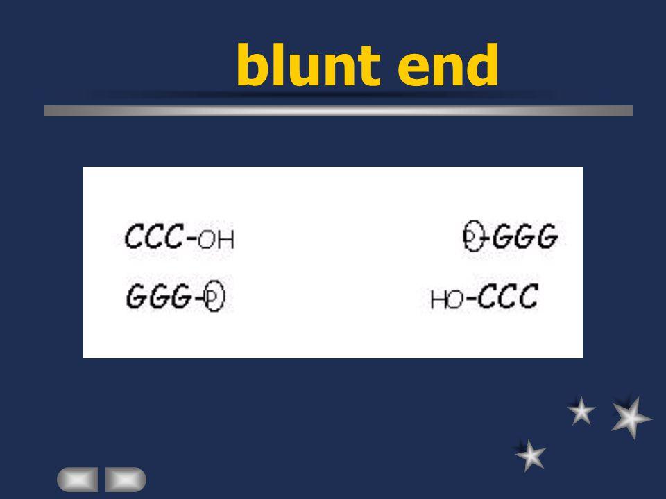 blunt end